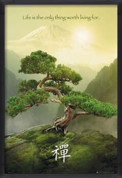 Poster înrămat Zen