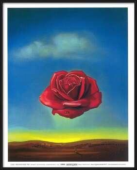 Poster înrămat Meditative Rose, 1958